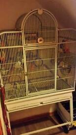 Large parrot cage for sale £75 ono