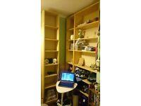 Large shelving and storage unit