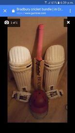 Bradbury cricket set excellent condition