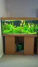 Grab a bargin!! Juwel rio 300 fish tank and accessories TO BE SOLD AS SEEN