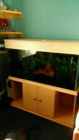 4' fish tank complete set up