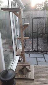 outdoor wooden cat scratching post
