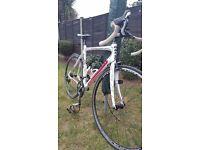 Carbon Road Bike. Moser 111 105