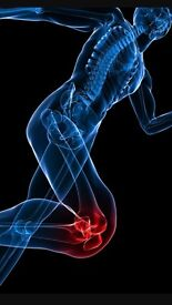 SPORTS INJURY REHAB THERAPIST: Experienced strength & conditioning coach/student physiotherapist