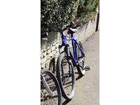"Claudbutler Olymlus Pro - 26"" Hardtail mountain bike"