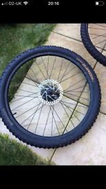Mountain bike wheels with tyres