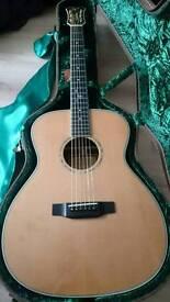 Freshman Acoustic FA500 w/ case