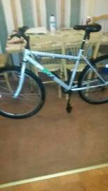 BIKE BOGNOR REGIS CAN DELIVARI