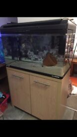 Fish tank ,stand full set up with external filter free delivery