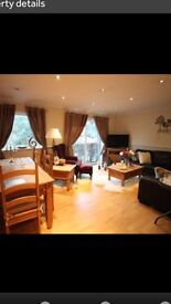 Large newly decorated 2 bed flat SHENFIELD