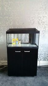 Brand New Tetra Starter Line Tank Full set up Can Also Supply Fish