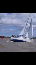 SAILING YACHT SEA MASTER 815 BOAT