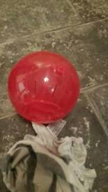 2 dwarf hamster balls