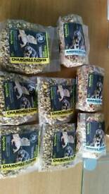 Tortoise and bearded dragon flower mix rrp £4.99