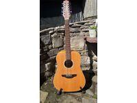 Takamine 12 string electro/accoustic guitar EG510S-12