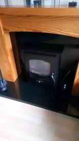 Multi fuel inset stove