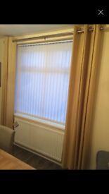Ochre NEXT curtains