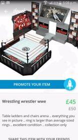 Wrestling (50)