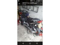 135 cc moped all electrics working starts straight away two keys log book perfect little bike