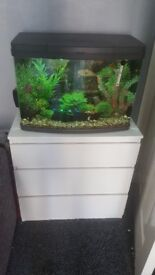64ltr Full Setup with Unit and extras