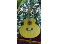 Acoustic Bass guitar + carry bag for sale