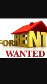 Looking for rent