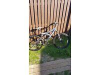 Mens barracuda kinsei bike