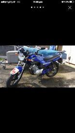 Yamaha ybr 125 leovince exhaust