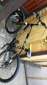 Boss convert mountain bike