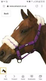 Purple sheepskin headcollar