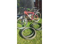 voodoo mens mountain bike