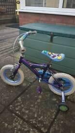 Girls Ladybug Bike