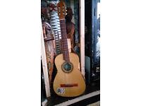 BM Classico Acoustic Guitar