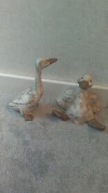 Crock ducks