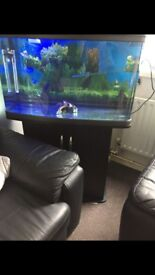 120L FISH TANK AND CABINET, NEED GONE ASAP!