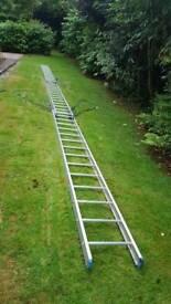 Triple Ladder basically new