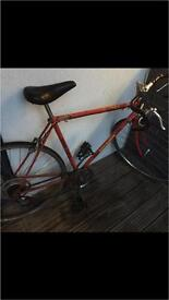 80's Vintage Raleigh Ace