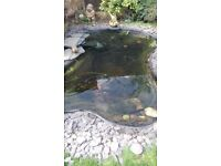 Preformed pond liner approx 9ft x 5ft**REDUCED**