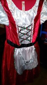 Little red ridding hood dress up world book day age 11-12