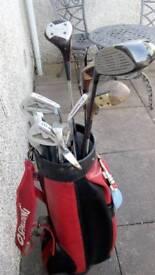 12 golf clubs