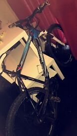 Lombardo bike duralia has snapped offeres