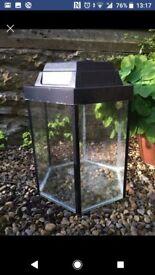 Fish Tank / Plant Terrarium