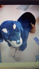 Soft median dog teddy