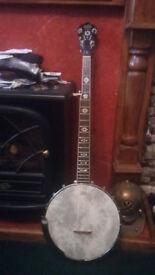 Banjo (five string open back)