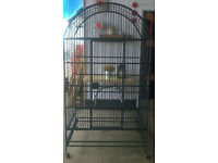 extra large bird rat cage