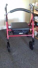 Adult walking stroller