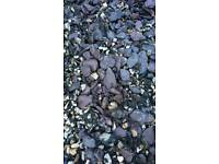 Dark grey Slate garden chippings.