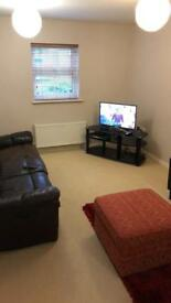 Modern, clean one bedroom flat to rent