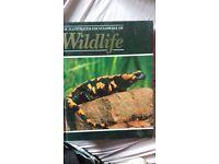 the illustrated encyclopaedia of wildlife volume 29