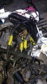 Yellow race injectors